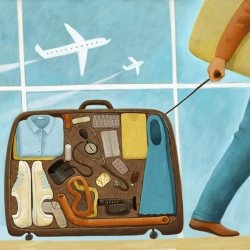 travel-luggage